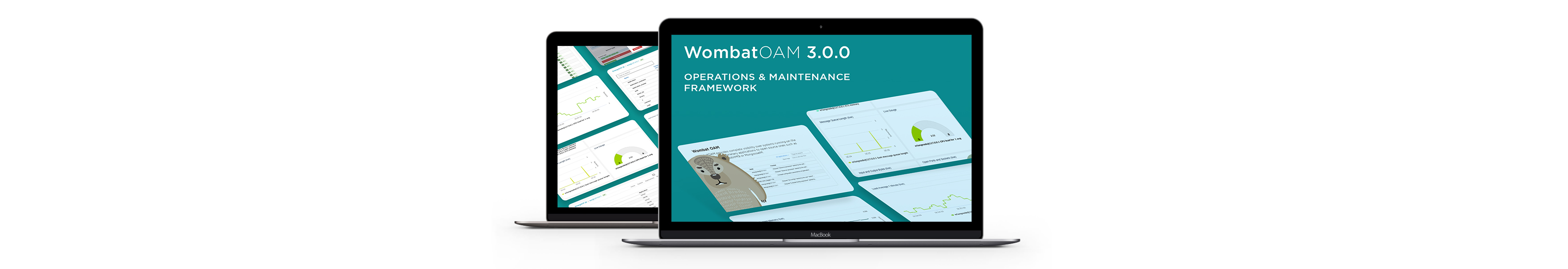 WombatOAM Product Page - 3.0.0 Dashboards