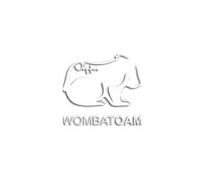 WombatOAM 3.0.0 Product Brochure | Erlang Solutions